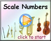Scale Numbers